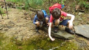 boys catching tadpoles in a puddle